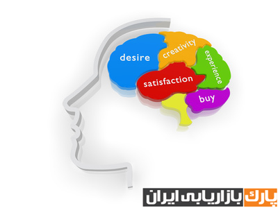 بازاریابی عصبی - Neuro marketing - مغز انسان