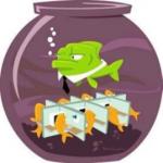 پروش مدیران بازاریابی - مدیر فروش